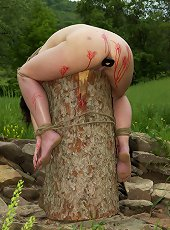Bound over the top of a large stump | Infernal R..